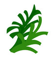 lettuce icon cartoon style vector image