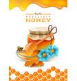 natural honey poster vector image vector image