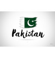 pakistan country flag concept with grunge design vector image
