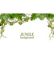 tropical jungle lianas vine and palm leaves banner vector image vector image