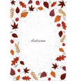 autumn leaves and mushrooms on white background vector image vector image
