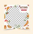 autumn social media post templatespost square vector image vector image