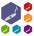 Cigar icons set vector image vector image