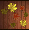 colored thanksgiving background vector image