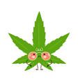 cute sad weed marijuana leaf character vector image vector image