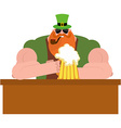 Leprechaun drinking beer Big and serious vector image vector image