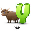 letter y is for yak cartoon alphabet vector image