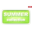 Summer Collection inscription vector image