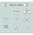 Bows vintage design elements set Isolated on blue vector image vector image