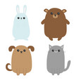 cartoon dog cat bear grizzly rabbit hare icon vector image