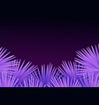 colorful modern with tropical palm leaves and vector image vector image