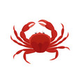 crab in flat design isolated vector image