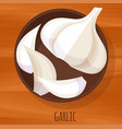 garlic flat design icon vector image vector image