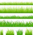 grassy borders vector image