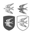 heraldic shields with bird vector image vector image