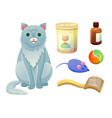 set for taking care about feline food for cat vector image vector image