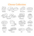 set of different types of cheese hand vector image