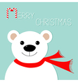 White polar bear in red scarf Candy cane Merry vector image