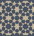 abstract seamless islamic pattern vector image vector image