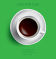 coffee cup isolated on green vector image