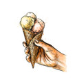 female hand holding ice cream in waffle cone vector image