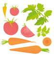Fresh tomato and carrot set vector image vector image