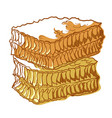 honeycomb bee icon sweet healthy natural food vector image