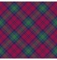 Lindsay tartan fabric texture diagonal seamless vector image vector image