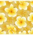 seamless summer pattern frangipani plumeria vector image vector image