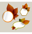 set of autumn discount tickets labels stamps vector image