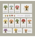 Set of cards with season trees for your design vector image