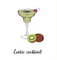 skech cocktail kiwi sketch cocktails vector image vector image