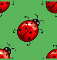 summer seamless pattern with ladybug vector image