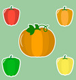 a set of fresh vegetables in a white stroke on a vector image vector image