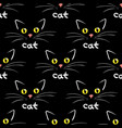 cat face on black seamless background vector image