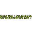 hop branches with cones and leaves seamless border vector image vector image
