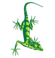 lizard with long claws vector image vector image