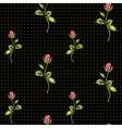 rose pattern on black with dots vector image vector image