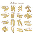 set of colored different pasta shapes vector image vector image