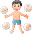 vocabulary human body vector image