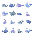 whale blue tale fish icons set cartoon style vector image