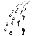bare feet and paws dog vector image vector image