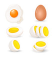 boiled eggs whole and half fresh and fried vector image vector image