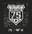 College sport emblem and design elements vector image vector image