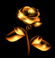 darkness and golden fairy flower vector image vector image