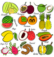 fruits set3 vector image vector image