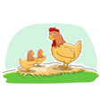 hen with chickens vector image vector image