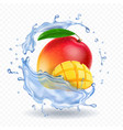 mango in water splash fresh fruit realistic icon vector image vector image
