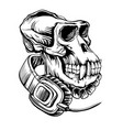 skull of a gorilla with headphones vector image vector image