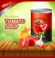 tomato soup packshot background vector image